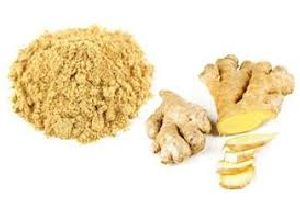 Ginger Extract (Zingiber officinale) Gingerol5%
