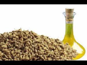 Ajowan Seed Oil 02