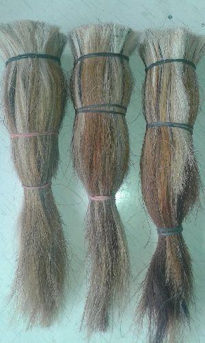 Buffalo Tail Hair 03