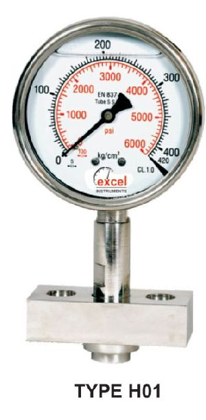 HDS Diaphragm Sealed Type Pressure Gauges