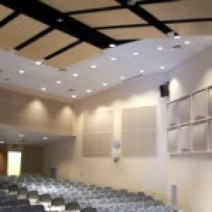 Acoustic Beam Panels 06