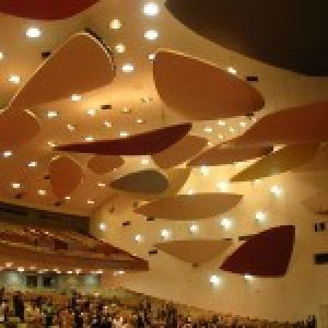 Acoustic Beam Panels