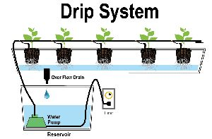 Drip Irrigation Systems
