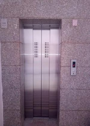 Auto Door Four Panel Passenger Lift