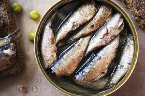 Canned Sardine Fish 02