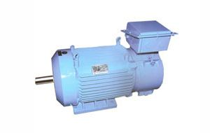 Three Phase AC Crane Duty Motors