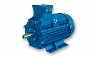 Three Phase AC Flame Proof Motors