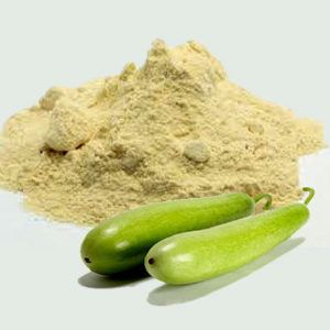 Dudhi Powder
