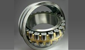 double row bearings