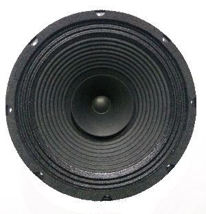 12 Inch PA System Speakers