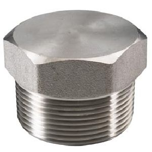 Stainless Steel Fitting Plug
