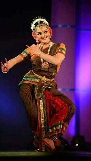 Bharatanatyam Dance Costume 11