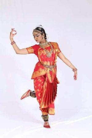 Bharatanatyam Dance Costume 12
