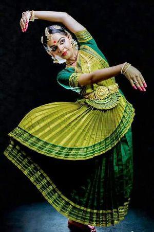 Bharatanatyam Dance Costume 13