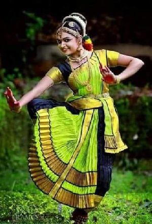 Bharatanatyam Dance Costume 14