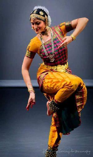 Bharatanatyam Dance Costume 17
