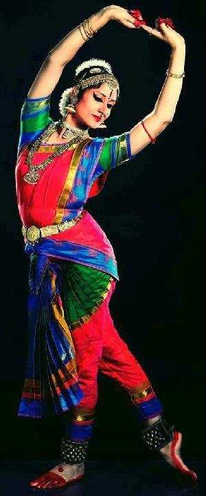 Bharatanatyam Dance Costume 20