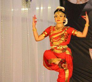 Bharatanatyam Dance Costume 22