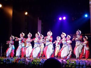 Odissi Dance Costume 08
