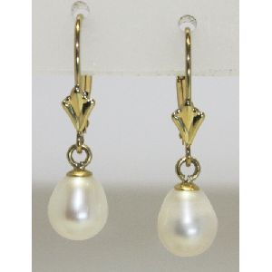 APC500 Earrings