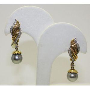 APG100 Earrings