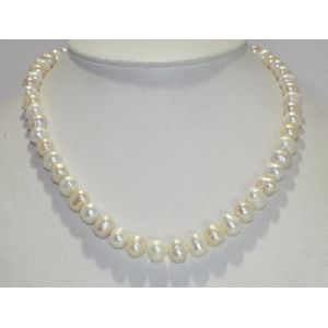 CP8563 Necklace