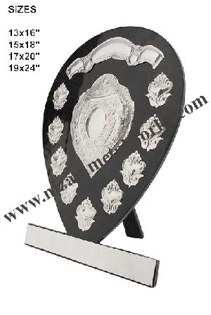 Sports Shield 01