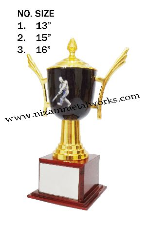 Sports Pic Cup