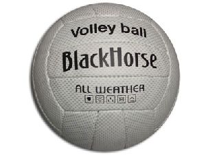 4564 Volley Ball