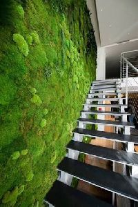 Artificial Greenwall Construction Service