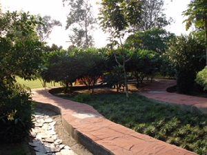 Landscape Development Service 06