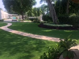 Landscape Development Service 09
