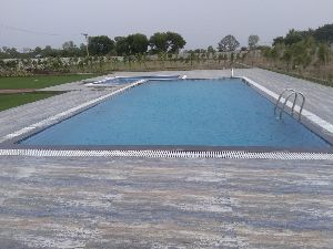 Swimming Pool Landscaping 05