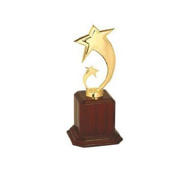Corporate Trophies 06