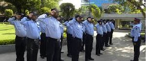 Institute Security Guard Services