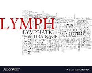 11B Lymphatic Drainage