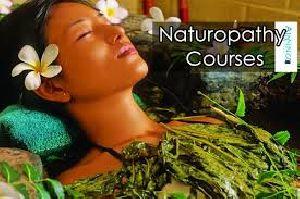 20C Naturopathy Courses