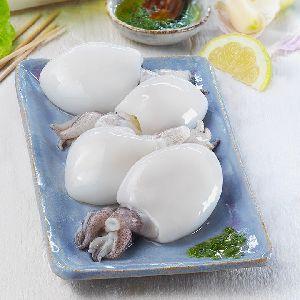 Frozen Cuttlefish 03