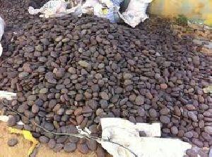 Pebble Stone 05