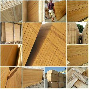 Teak Wood Sandstone 05