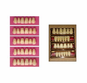 Acry Pan Full Set Teeth