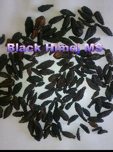 Black Fruits himej