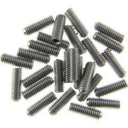 Stainless Steel Grub Screw