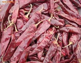 No 5 Guntur Dry Red Chilli