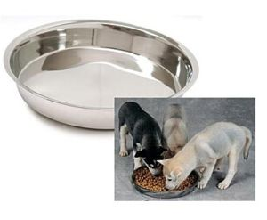 Puppy Dish Stainless Steel