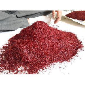 Fresh Kashmiri Saffron Flowers