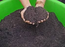 Animal Based Organic Manure