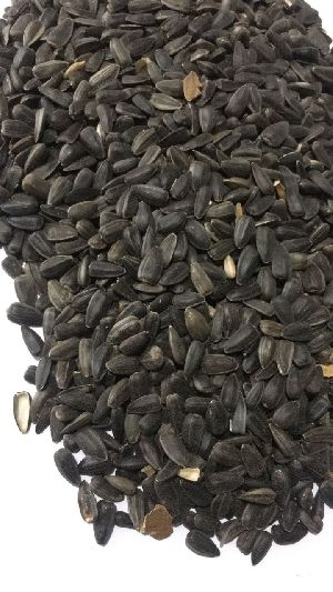 Sunflower Seeds 08