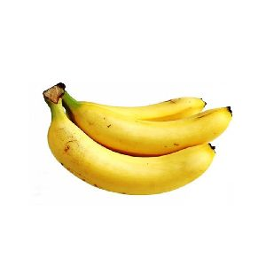 High Quality Banana