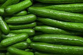 High Quality Cucumber